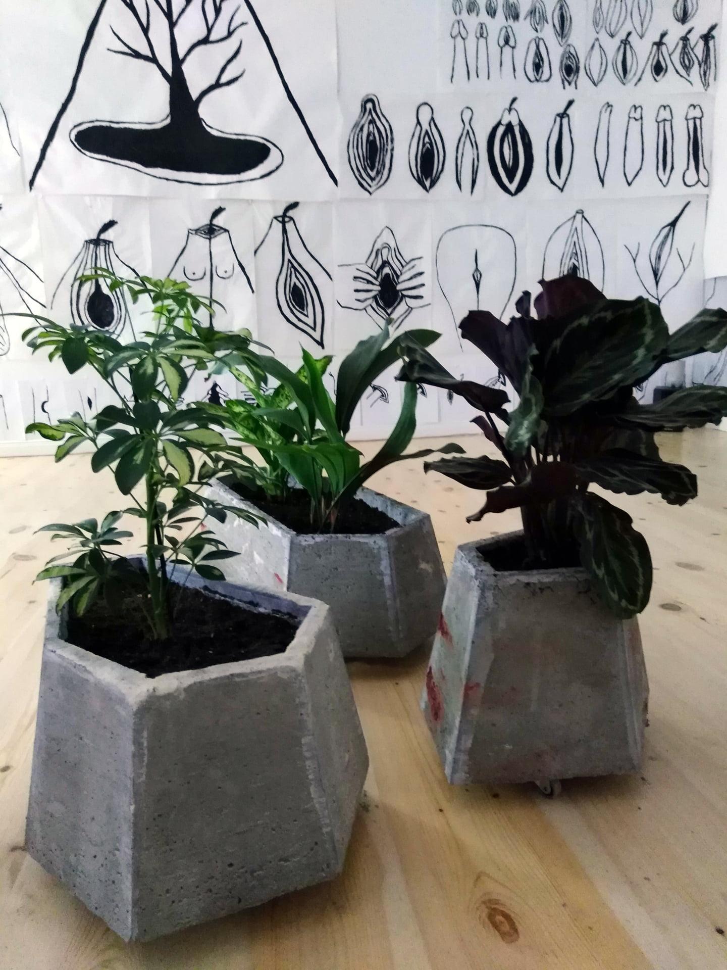 Planting Concrete Vases_01